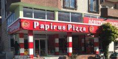 Papirus Pizza Viranşehir Şubesi